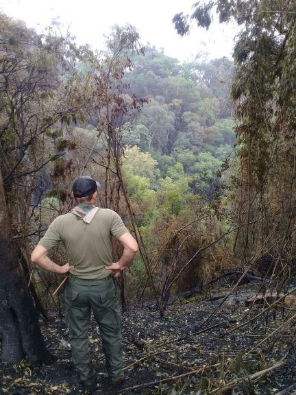 Los guardianes de la naturaleza y el esfuerzo contra los incendios