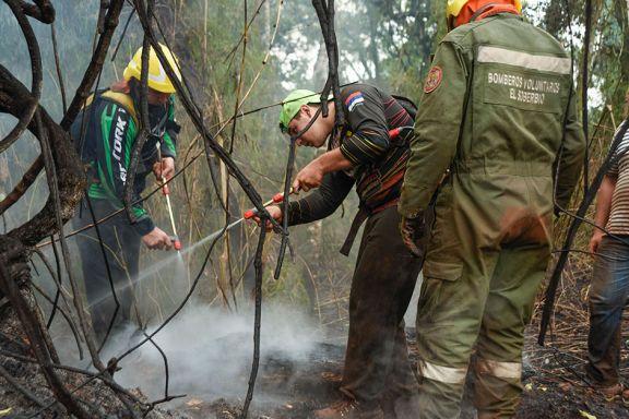Selva adentro, la planificación de los ataques frente a las llamas