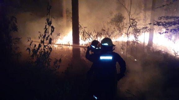 Bomberos Voluntarios trabajaron toda la noche para controlar un incendio forestal en Colonia Delicia