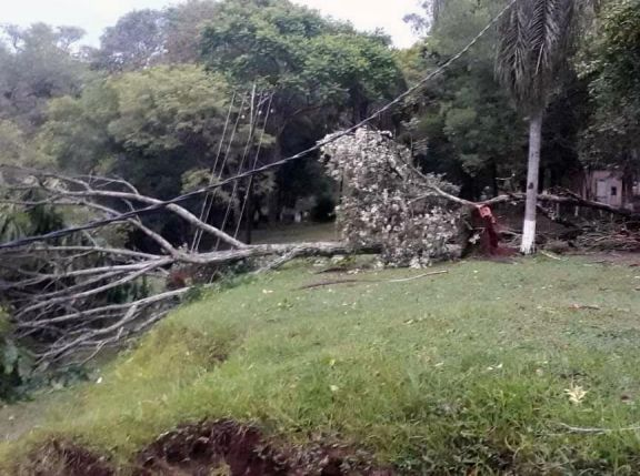 Montecarlo: en zona de colonias continúan sin energía eléctrica tras la tormenta