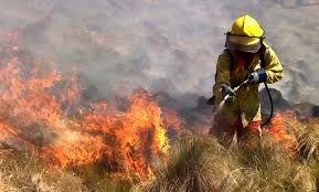Continúan activos los focos de incendios en Jujuy, Neuquén y Mendoza