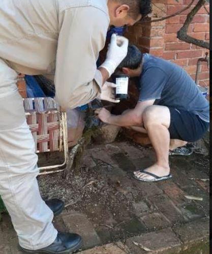 Santa Ana-Puerto Rico: monitoreo de flebótomos y colocación de ovitrampas