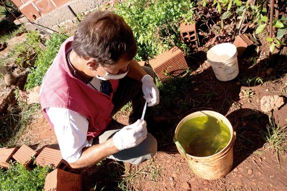 El Liraa arrancó en Miguel Lanús, el barrio con más criaderos de Aedes