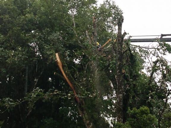 Localidades de la zona Norte estuvieron casi 5 horas sin energía eléctrica