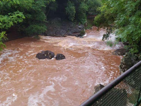 Las lluvias trajeron alivio a la emergencia hídrica en Capioví