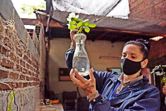 El cierre de las fronteras frena  también al dengue