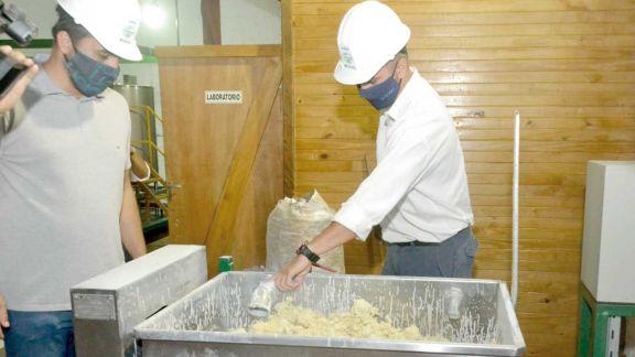 Producirán alimento balanceado para ganadería