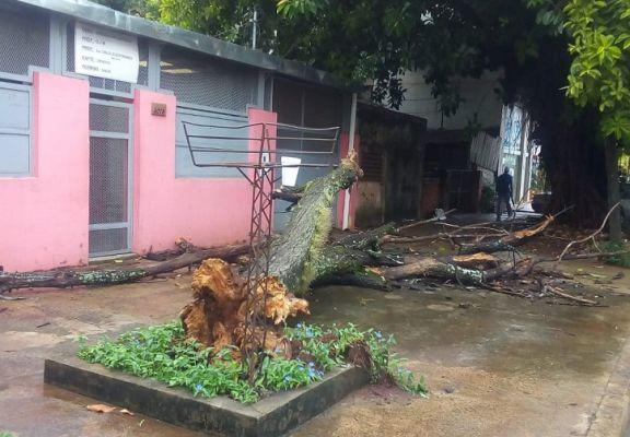 Familias asistidas en Posadas y evacuados en Oberá por las lluvias
