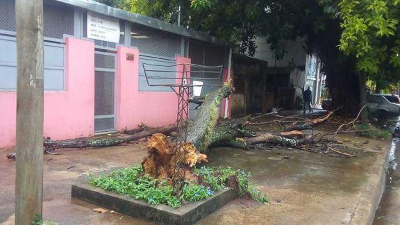 Oberá: 15 familias evacuadas y un desaparecido