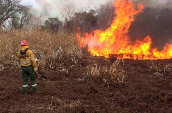 Río Negro: allanaron la casa del principal sospechoso de causar el incendio