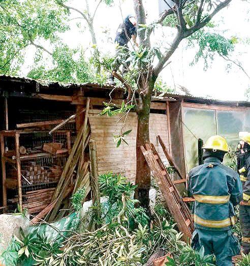 Los principales riesgos que corren los bomberos al cumplir la misión