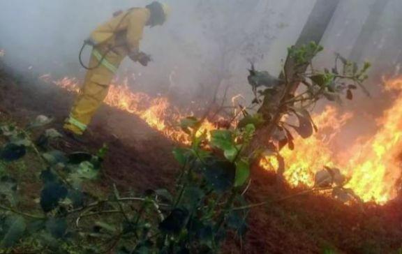 Advertencia nivel Amarilla por peligrosidad de incendio en Posadas