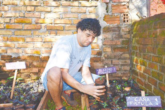 Apuesta voluntaria a favor de la conservación de plantas nativas