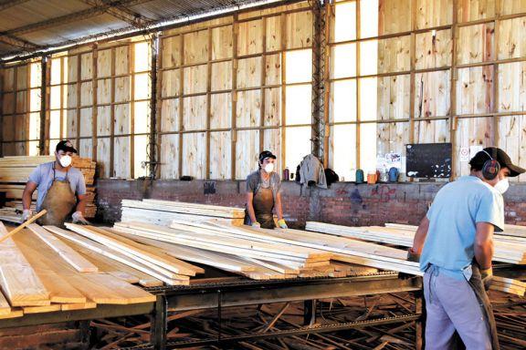 Crece la polémica por exportación de rollos de madera