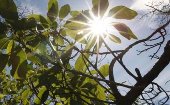 Continúan los días a pleno sol con temperaturas de hasta 36 grados