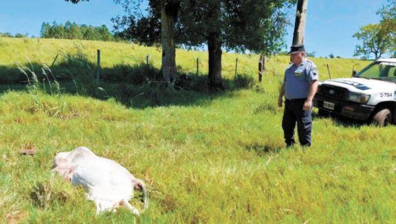 Productores realizaron un mapa para registrar delitos rurales