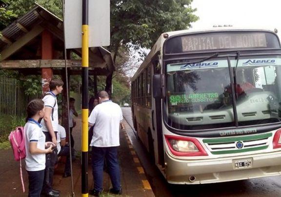 Oberá: refuerzan horarios y modifican recorridos en líneas de transporte urbano