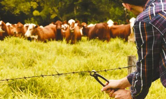 La Farm manifestó preocupación por el aumento de delitos rurales