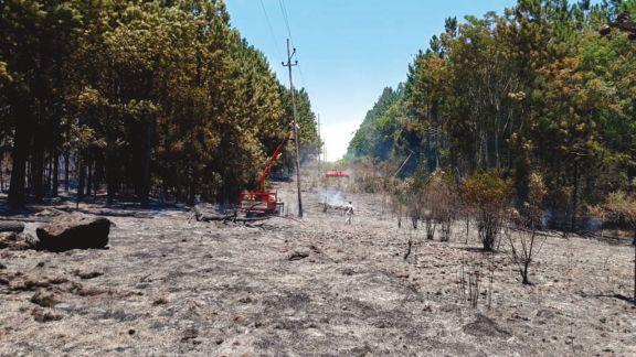 Estiman multas millonarias para quienes provoquen incendios