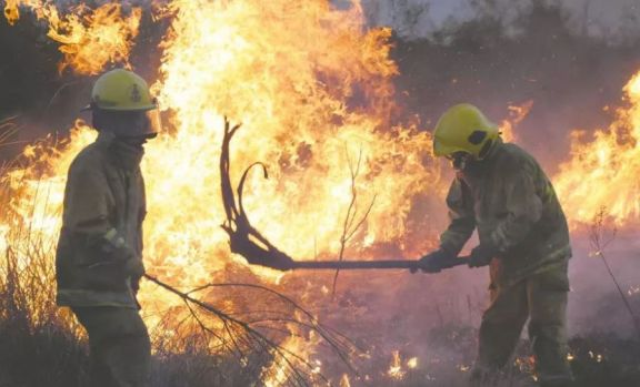 """Chemes sobre multas por quemas: """"El 97 por ciento de los incendios los ocasiona el hombre"""""""