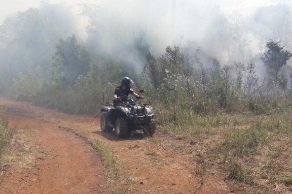 Sofocaron incendios de malezas y pinares en tres localidades