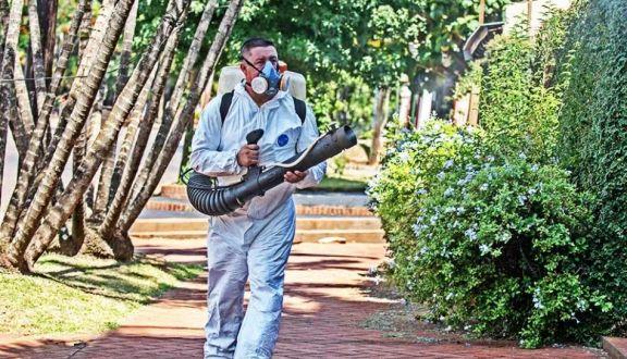 Registran hasta 12 notificaciones diarias por dengue en Posadas