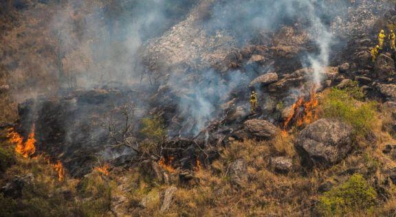 Continúan activos los focos de incendios forestales en Río Negro, Chubut y Santa Cruz