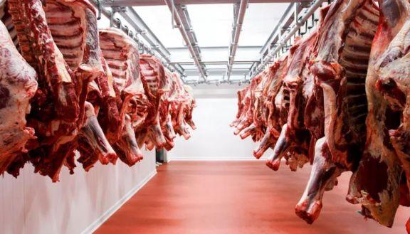 Vendieron más de 18.000 kilos en el Misiones Carne