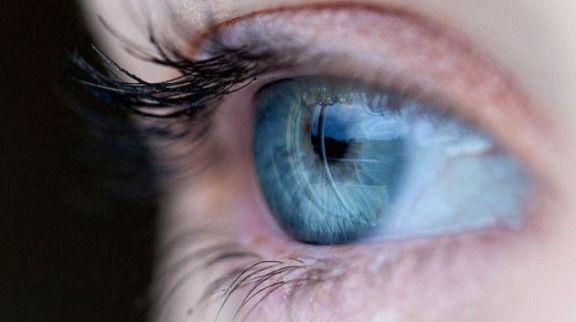Científicos argentinos identificaron mutaciones genéticas asociadas a una severa discapacidad visual