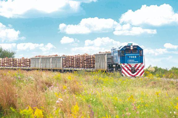 El tren de carga entre Misiones y Buenos Aires transita por el mejor momento.