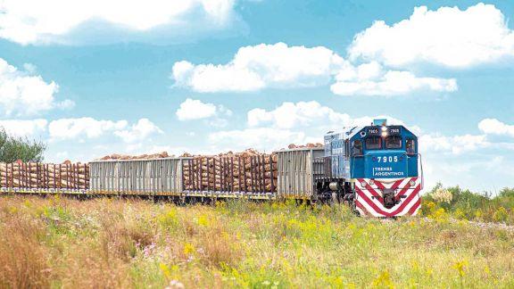 Las cargas transportadas en tren registraron nuevo récord en marzo
