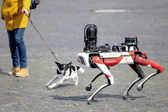 El perro del futuro no desobedece