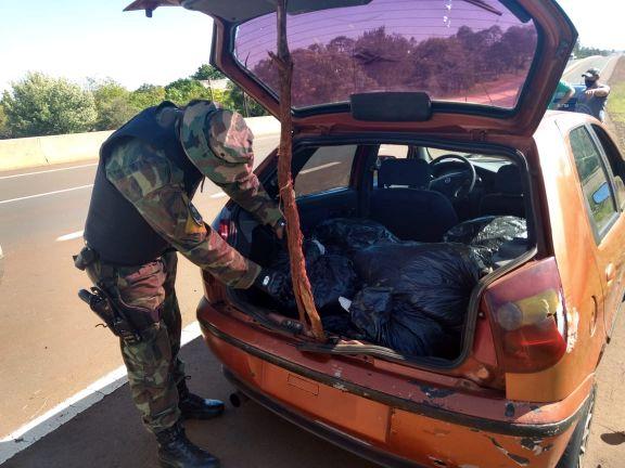 Prefectura secuestró 50 kilos de marihuana y detuvo a dos hombres, en Santa Ana y Puerto Libertad