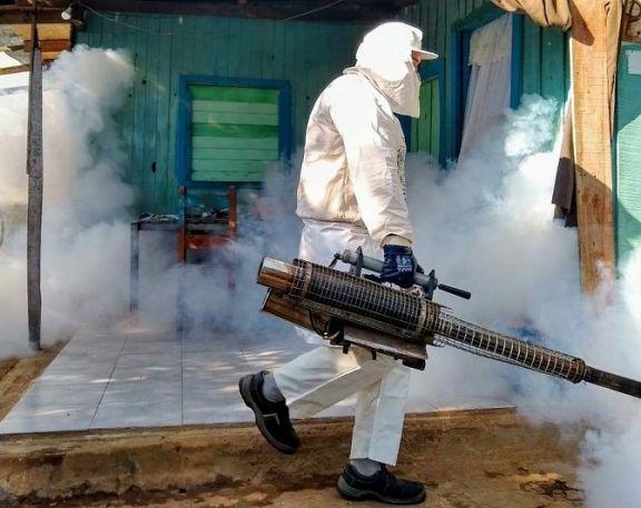 Posadas: el 40% de los pacientes con dengue tuvo criadero de Aedes aegypti en su hogar