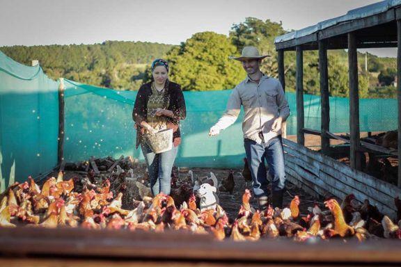 Pareja de docentes implementó la agroecología como estilo de vida