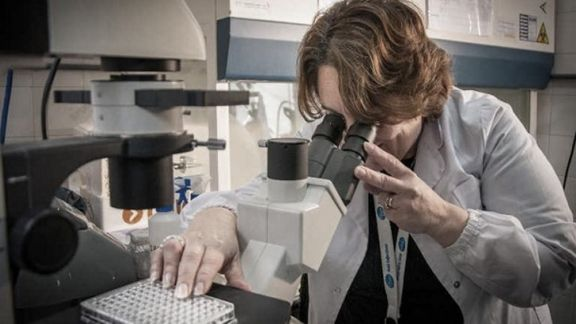 Los anticuerpos contra el coronavirus permanecen en la sangre al menos ocho meses, según estudio