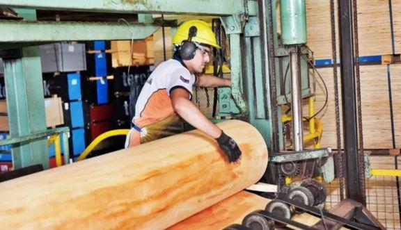 Misiones entre las provincias donde Pymes exportadoras aumentaron sus operaciones