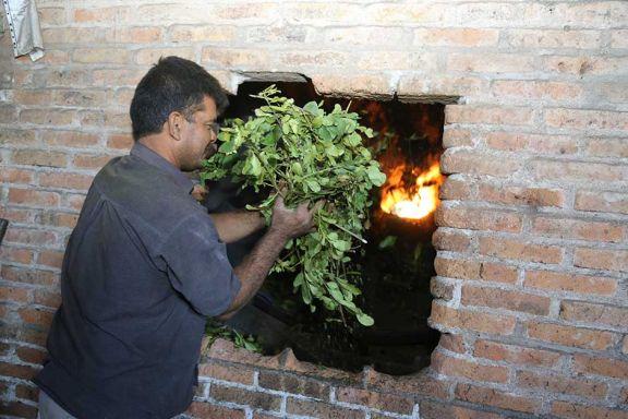 Los Butiuk apuestan a la producción artesanal de hoja verde desde 1920