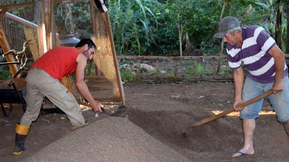 Colonos elaboran abonos naturales para reemplazar el uso de químicos