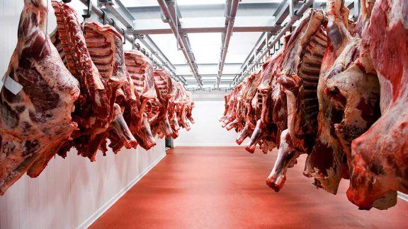 Suspenden por 30 días las exportaciones de carne vacuna