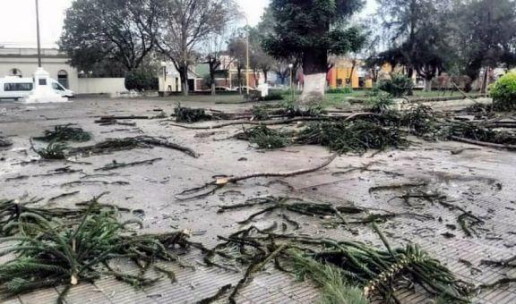 Fuerte temporal causó destrozos en la localidad correntina de Sauce
