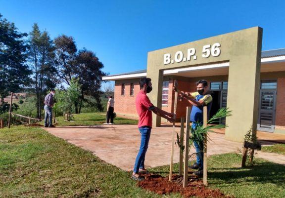 Conciencia ambiental desde la escuela y con acciones