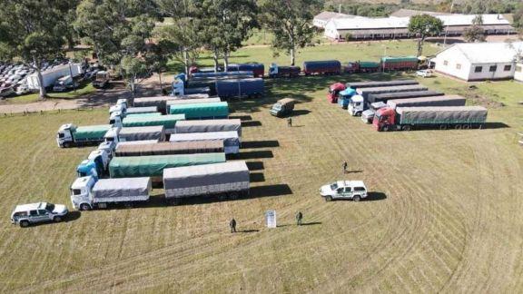 Ruta de la soja ilegal: detenidos, maniobra regional y causa judicial