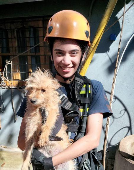 Un perro cayó en un pozo de 10 metros de profundidad