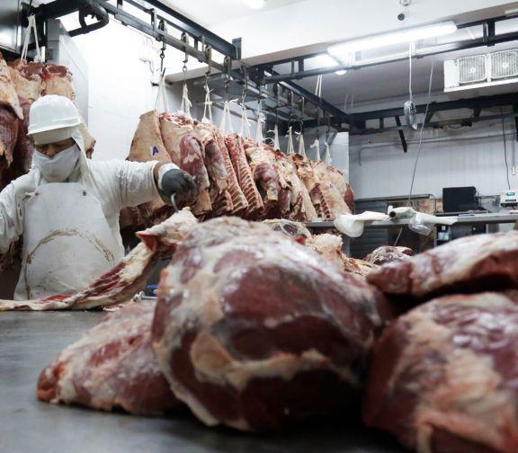 Quedó oficializado el nuevo esquema de exportaciones para la carne bovina