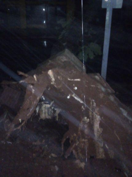 Cayó un enorme árbol sobre calle Sarmiento, tránsito cortado y no hay luz
