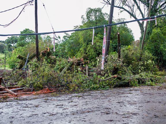 Debido a la fuerte tormenta parte de Posadas y localidades del interior sufren cortes de energía eléctrica