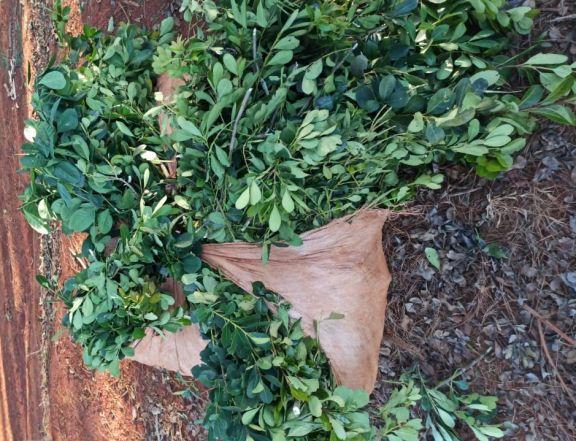 Frustran robo de yerba mate en San Pedro: un detenido