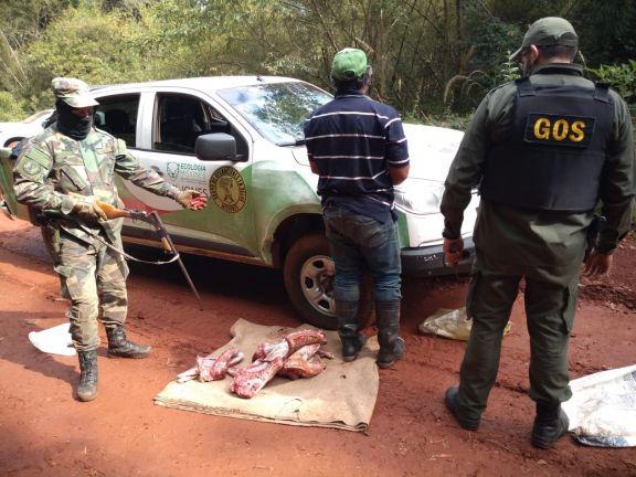 Armas, demorados y presas secuestradas en operativos para frenar la caza furtiva