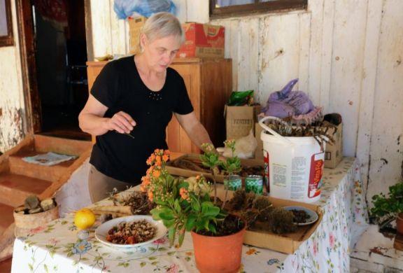 Feria de Semillas Nativas y Criollas en Montecarlo